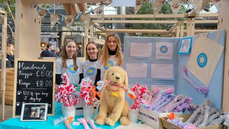 ... selling recycled denim and a dog's tugging toy. Picture: Young Enterprise