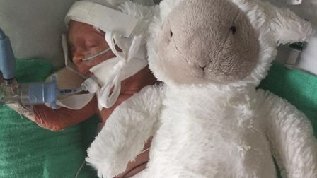 Smaller than his teddy... a tiny Reggie weighing just 23oz at birth. Picture: Sick Children's Fund