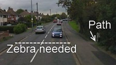 The stretch of Lynn Road where Mr Jones believes a crossing is needed