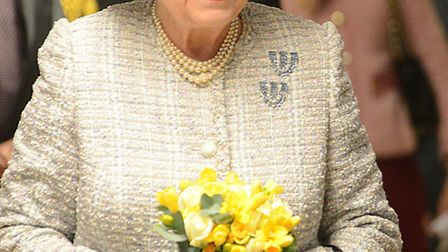 The Queen was introduced to staff and volunteers whilst on a tour of the Queen Elizabeth Hospital in