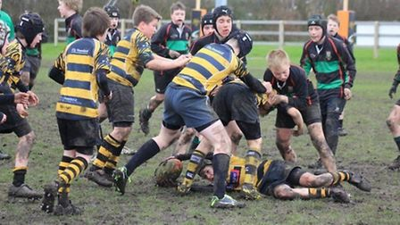 Ely Tigers in action
