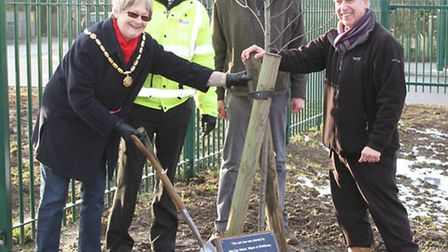 Tree planting at Sir Harry Smith