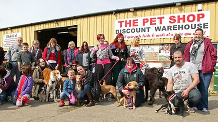Sponsored Dog Walk for the Ravenswood pet rescue. Picture: Barry Giddings.