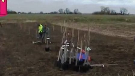 An orchard was planted in Parson Drove on Saturday