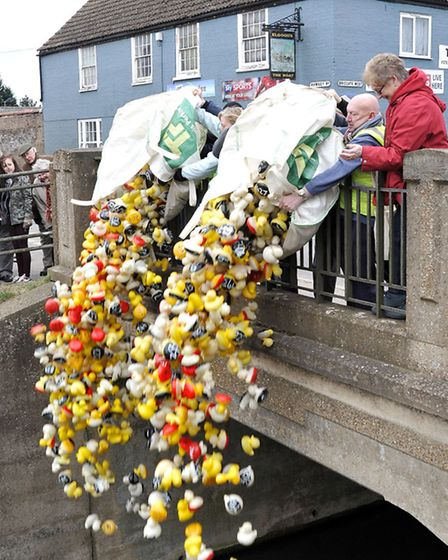 Whittlesey Mayor's charity duck race. The ducks are released.