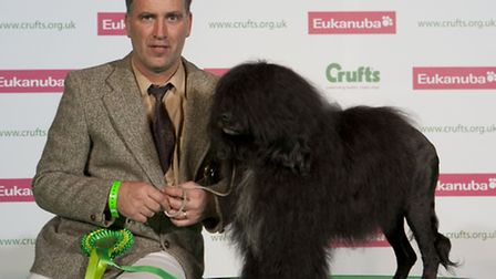 Shaun Dring with his Portuguese Water Dog called Indy, which won Best of Breed in the Working group