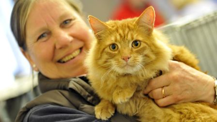Cats Protection League Annual Show at Little Downham Village Hall, Sarah Whitehead and Marmalade fro