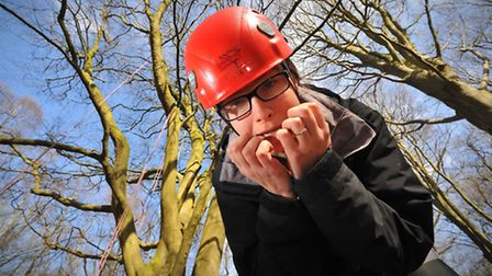 Have a go at tree climbing day at Kelling Heath Holiday Park where Sophie Wyllie took too the ropes.