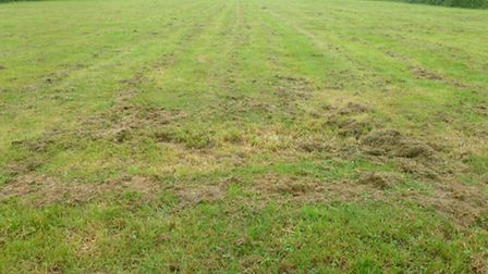 The state of open spaces in Chatteris