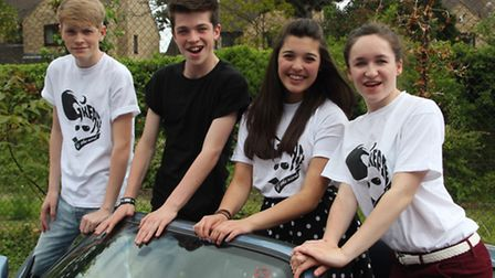 Viva Youth Theatre are set to perform Grease the Musical