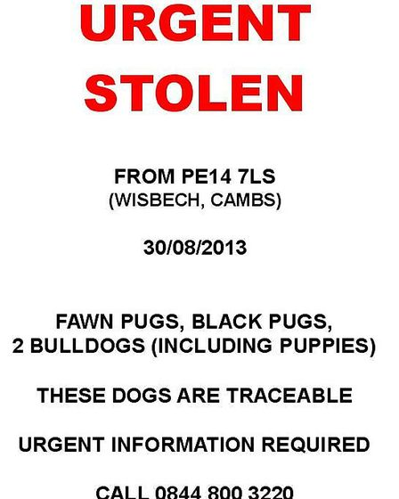 Dog theft: Poster being widely circulated