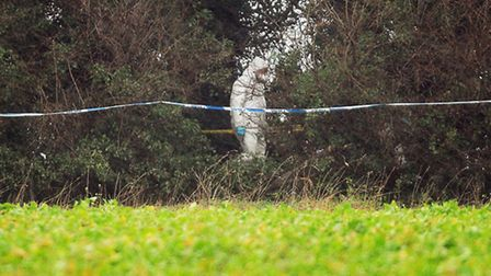 Forensics officers work in the area of woodland, where the remains of a body was found between Sandr