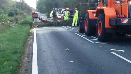 A1065 blocked Sunday afternoon by fallen tree