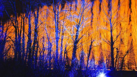 Anglesey Abbey winter lights