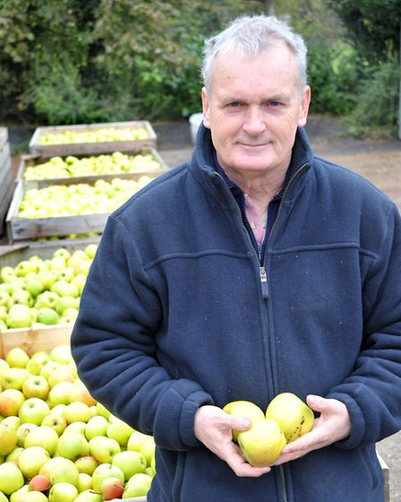Open weekend at Watergull Orchards, North brink, Wisbech, David James.