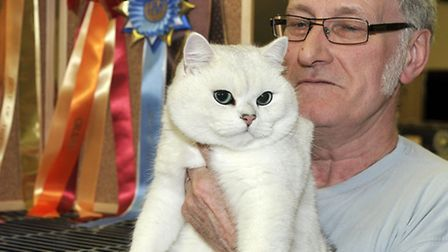 Exotic Cat Show at theTydd st giles community centre.Travis in the hands of Stuart McEwen.