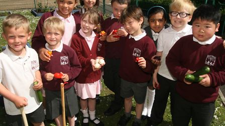 Great Dunmow Primary School on BBC Breakfast TV. Great Dunmow June 04, 2013. Photograph by Michael B