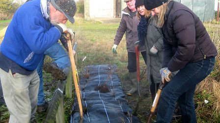 Wildlife on the Tracks: Rings End Nature Reserve. Rings End Workparty.