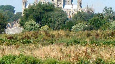 Three of East Anglia's most significant cathedrals come together to sing as one choir for the very f