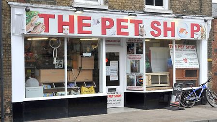 The Pet Shop, Station road. March.