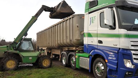 Farmer George Munns supplying suger beet for animal feed for Somerset floods. Picture: Steve William