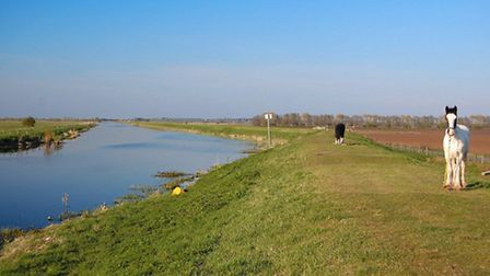 The Ouse Washes at Earith