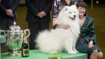 Sue Smith with Dan the Man after winning reserve best in show at Crufts 2014. Picture: onEdition
