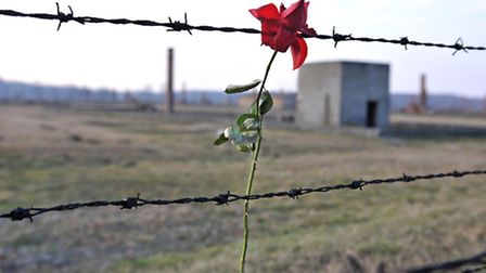 Flowers are tied to the fencing at Birkenau by visitors as a mark of respect to the millions of Jews