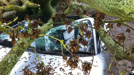 The Mazda MX5 which was crushed by a falling tree in Stuntney