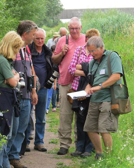 A guided walk. Picture: WWT WELNEY