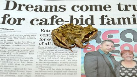 Frog visits Cambs Times office in March. Picture: Steve Williams.