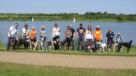 Greyhounds and their owners walked around Ferry Meadows.