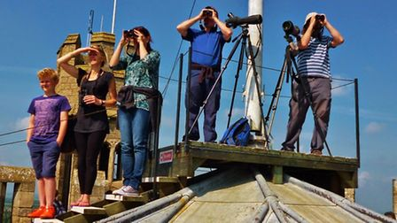 Members of Ely Wildspace enjoyed the opportunity to bird watch from the top of the West Tower