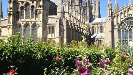 Ely Cathedral. Picture: SPP