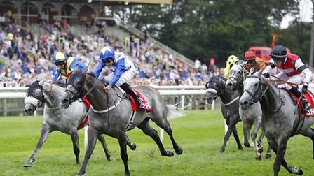 Races will provide regular excitement to punctuate a fun and relaxing social occasion.