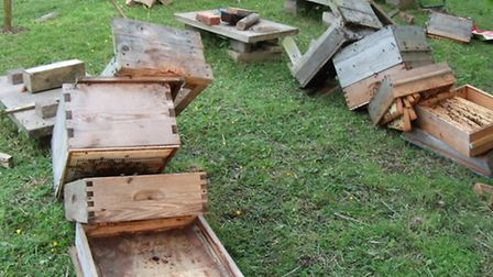 Beehives destroyed in March