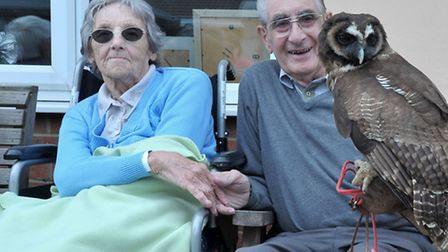 Heron Court open day, March. Phyllis and Ken Clarke with the Owl. Picture: Steve Williams.