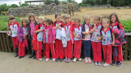 The Rainbows and Colchester Zoo.