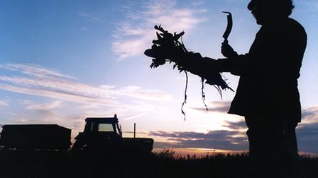 The Rural Enterprise Award will celebrate the rural enterprises, farmers and agricultural businesses