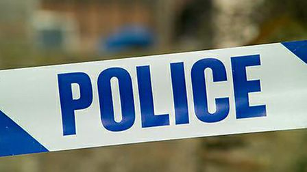 Police question two teenagers about car badge thefts