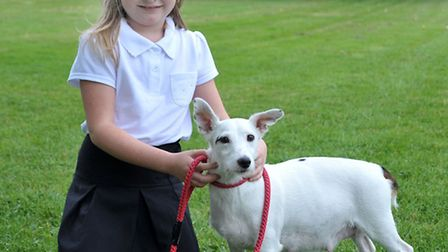 Shelley Ridgeon is a foster carer for Ravenswood Pet rescue. Ellie-Mae with Tilly.Picture: Steve Wil
