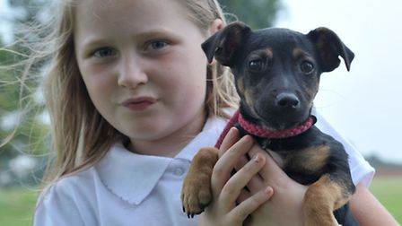 Shelley Ridgeon is a foster carer for Ravenswood Pet rescue. Ellie-Mae with Cookie,Picture: Steve Wi