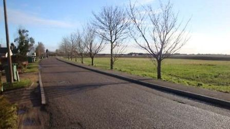 The existing trees, land and public footpath at Front Road.