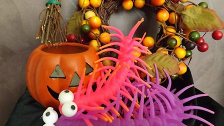 Scary bugs trail offers half-term fun for young visitors to Peckover Hosue