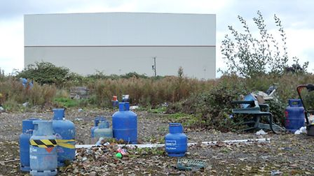 Potted Plants site on the A47,Wisbech. Picture: Steve Williams.