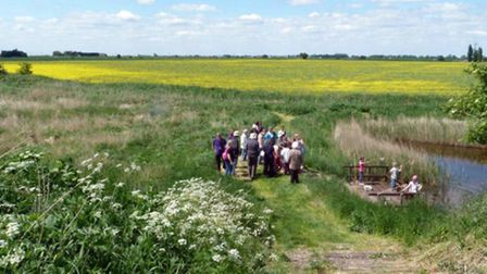Rings End Nature Reserve is located over 11 peaceful hectares, two miles north of March in Cambridgeshire.