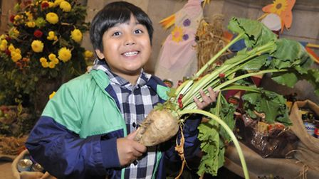 Ely Cathedral Harvest Festival, Ashwin from Ely with some sugar beet at last year's event.