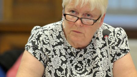 Overview and Scrutiny committee of the leader's annual meeting with the committee. Cllr Virginia Buc