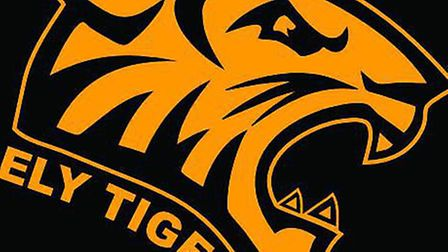 Ely Tigers