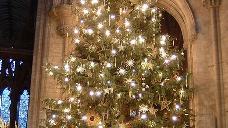 Papworth Hospital holds its charity carol service at Ely Cathedral on December 6.